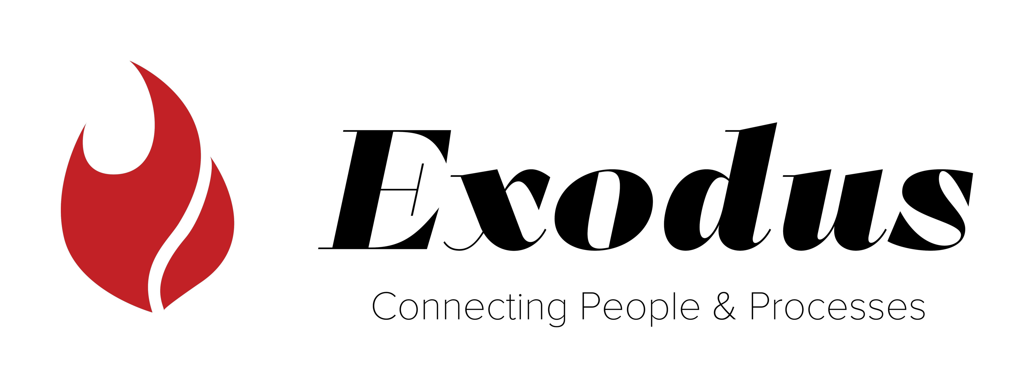 Exodus Management and Consulting, LLC